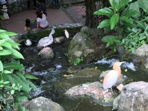 マレーシア観光