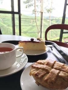 キャメロンハイランド 紅茶畑